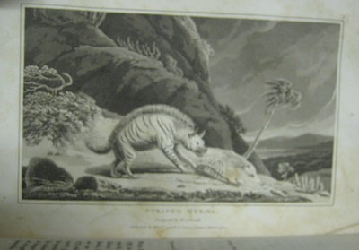 ZOOGRAPHY; or, the beauties of nature displayed. with select descriptions of the animal, and vegetable, with additions from the mineral kingdom. Systematically arranged. Illustrated with plates, designed and engraved by Mr. William Daniell (3 vol. set) by WOOD, W. (William Wood, 1774-1857)