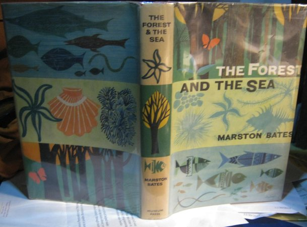 THE FOREST AND THE SEA: A Look At The Economy Of Nature And The Ecology Of Man by BATES, Marston