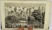Another image of China, Australia and the Pacific Islands, in the years 1853-56 by D'EWES, J.