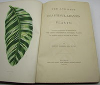 New and Rare Beautiful-Leaved Plants by HIBBERD, Shirley