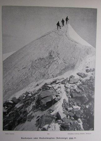 Alpine Majestaten Und Ihr Gefolge by PLATZ, Ernst