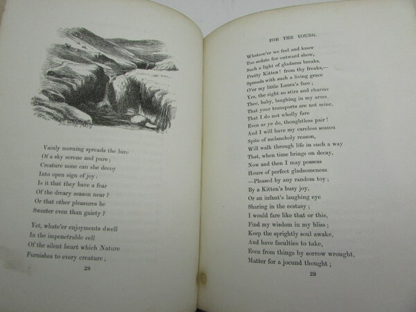 Wordsworths Poems For The Young By Wordsworth William