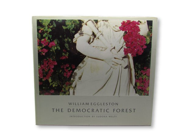 The Democratic Forest by EGGLESTON, William
