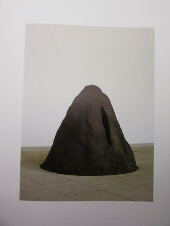Anish Kapoor. by KUNSTVEREIN HANNOVER