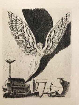 La Luciade ou l'âne. by DE PATRAS, Lucius