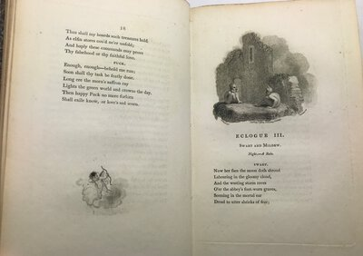 Poems. By Thomas Townshend Esq. of Gray's Inn. by TOWNSHEND, Thomas.