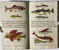 Another image of W. Belch's HISTORY OF FISHES & INSECTS. Price 6d cold.