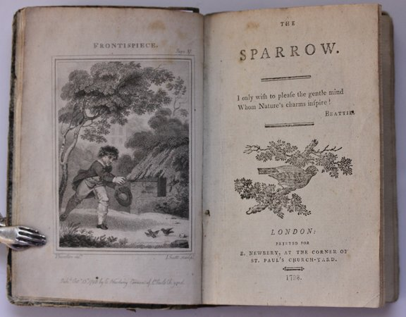 THE SPARROW. by [KENDALL, Edward Augustus.]