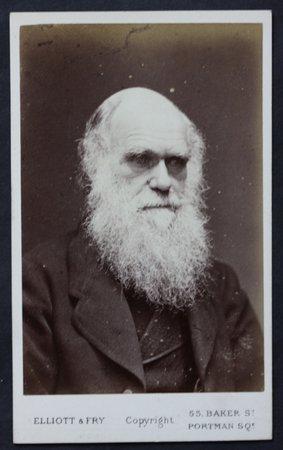 DARWIN, Charles.