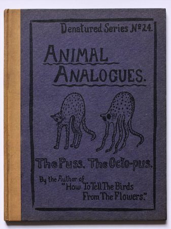 ANIMAL ANALOGUES. Verses and Illustrations By Robert Williams Wood. by WOOD, Robert Williams.