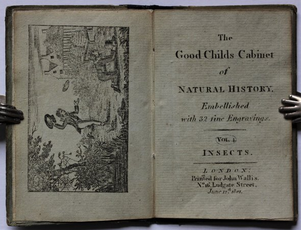 The Good Child's Cabinet of NATURAL HISTORY. Embellished with 32 fine Engravings. Vol. 4. INSECTS.