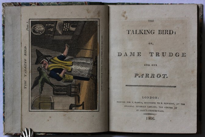 THE TALKING BIRD; or, Dame Trudge and Her Parrot.