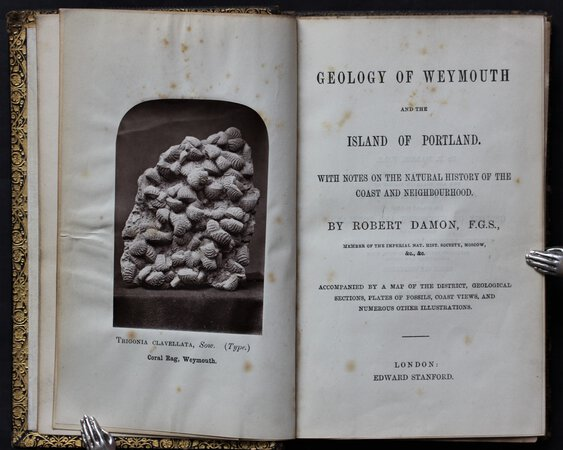 GEOLOGY OF WEYMOUTH and the Island of Portland. With notes on the natural history of the coast and neighbourhood. Accompanied by a map of the district, geological sections, plates of fossils, coast views, and numerous other illustrations. by DAMON, Robert.