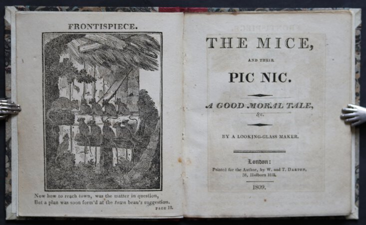 THE MICE AND THEIR PIC NIC. A Good Moral Tale, &c. By a looking-glass maker. by [ELLIOTT, Mary.]