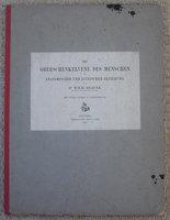 DIE OBERSCHENKELVENE DES MENSCHEN by BRAUNE, Wilhelm
