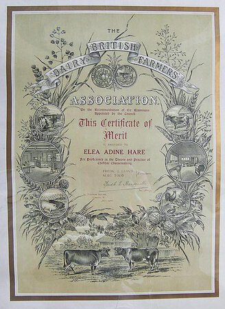 ATTRACTIVE CHROMOLITHOGRAPH CERTIFICATE OF MERIT by BRITISH DAIRY FARMERS ASSOCATION.