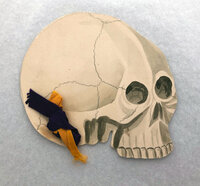 MENU CARD IN THE SHAPE OF A SKULL FOR THE 'SECOND ANNUAL BANQUET OF THE UNIVERSITY OF PENNSYLVANIA CHAPTER, by [MEMENTO MORI.] [PENNSYLVANIA MEDICAL FRATERNITY.]