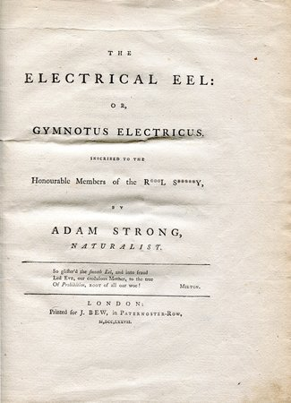 The Electrical Eel: or, Gymnotus electricus. Inscribed to the Honourable Members of the R***l S*****y, by Adam Strong [pseud.], Naturalist. by [PERRY, James] 'Adam STRONG', [pseudonym].