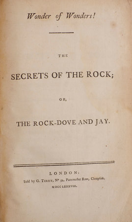 Wonder of Wonders! The Secrets of the Rock; or, the Rock-Dove and Jay. by WONDER.