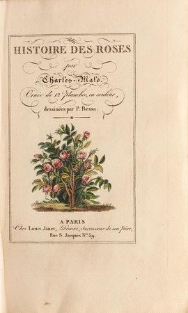 Histoire des roses... orné de 12 planches, en couleur, dessinées par P. Bessa. by MALO, Charles.