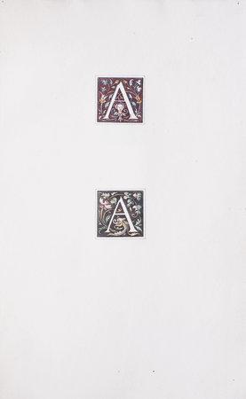 Lettres ornées du 16ème siècle [spine title]. by BAUDON, A.