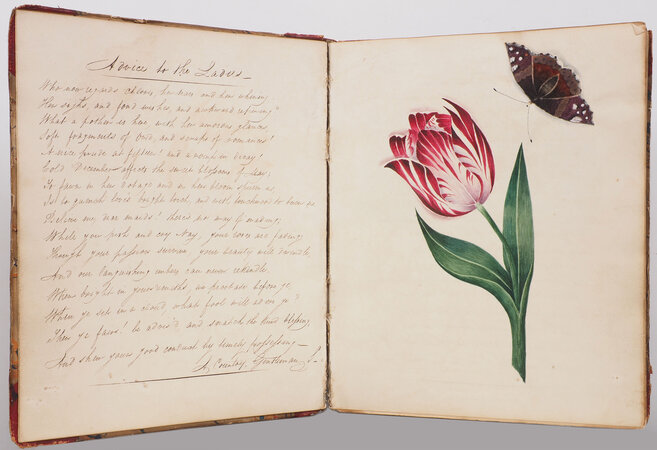 [An Album; or Selections from many Authors; interspersed with Drawings and Poetry]. by JORDAN, Ann.