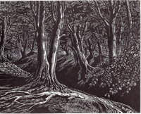 The Great Storm of October 1987 and its aftermath. Five Wood Engravings. by POOLE, Monica, DALBY, Claire, REDDICK, Peter, SMITH, Peter and TUTE, George. SOCIETY OF WOOD ENGRAVERS.