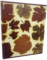 Mon Docteur le Vin. by KIEFFER, Michel. DUFY, Raoul. DERYS, Gaston.