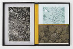 Another image of Bokeh: A Little Book of Flowers. by SCHANILEC, Gaylord, poet, artist & printer.
