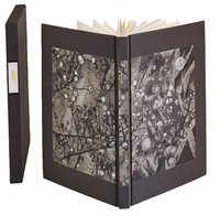 Bokeh: A Little Book of Flowers. by SCHANILEC, Gaylord.