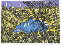 Sula bassana over Parys Mountain mine. by GRAHAM, Rigby, 1931-2015.