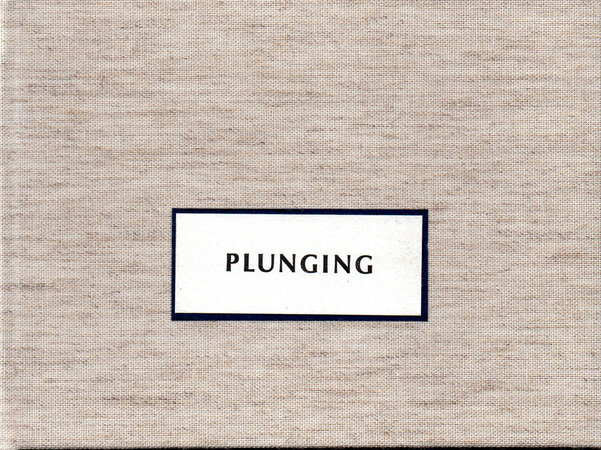 Plunging. by SCHANILEC, Gaylord. MIDNIGHT PAPER SALES. DANTICAT, Edwidge.