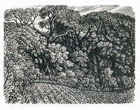 At the Edge of the Woods, Ashley Chase. by STONE, Reynolds. (1909-1979)