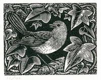 Christmas Robin. by STONE, Reynolds.(1909-1979)