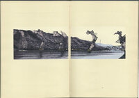 High Bridge. Ten Wood Engravings of Demolition with Nine Stories of Construction. by SCHANILEC, Gaylord. MIDNIGHT PAPER SALES.