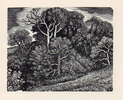 Another image of Boxwood. by STONE, Reynolds. TOWNSEND WARNER, Sylvia.