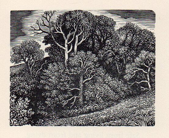Boxwood. by STONE, Reynolds. TOWNSEND WARNER, Sylvia.
