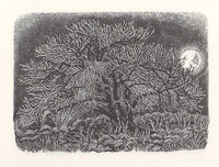 Diary of an Apple Tree. by WHITTINGTON PRESS. MACGREGOR, Miriam.