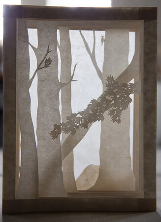 Forest Light. by RAHDA PANDEY, book artist.
