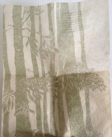 Abies Spectabilis. by RAHDA PANDEY, book artist.