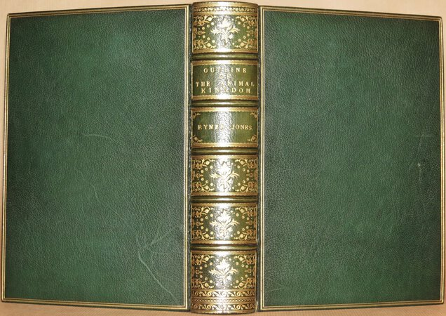 A General Outline of The Animal Kingdom and Manual of Comparative Anatomy. by JONES, Thomas Rymer