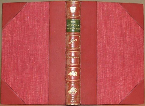 The Country Gentleman. by SCRUTATOR (HORLOCK, K.W.)