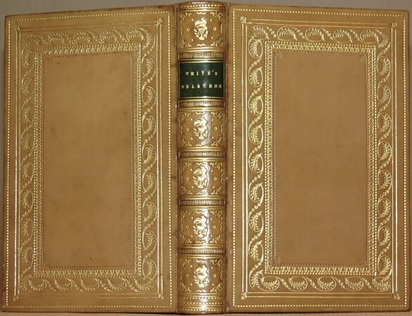 The Natural History of Selborne. by WHITE, Gilbert