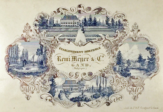 COLOR LITHOGRAPHED TRADE CARD: by (Trade Card - Horticulturist) (REMI MEYER & CO.)