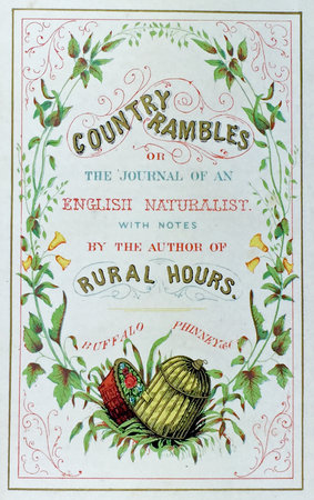 COUNTRY RAMBLES IN ENGLAND by (Wildflowers) (KNAPP, John Leonard.)