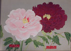Another image of THE PICTURE BOOK OF PEONIES.