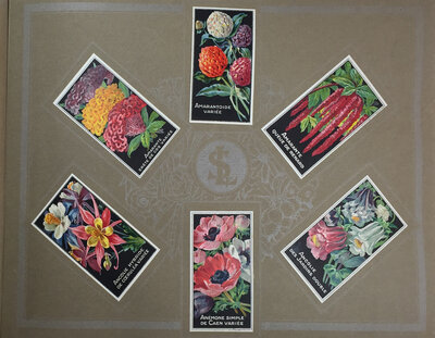 AN ALBUM OF SEED PACKET LABEL ILLUSTRATIONS. by SIMON LOUIS FRÈRES & Cie./ Grainiers.