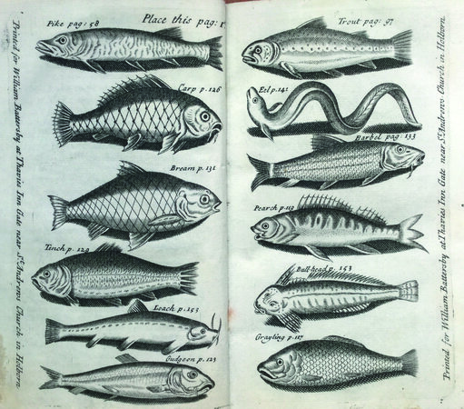 The Angler's Vade Mecum: by CHETHAM, James (1640-1692).