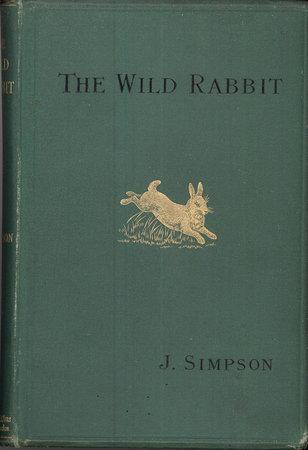 The Wild Rabbit by  SIMPSON J