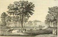 Dell 'Arte dei Giardini Inglesi by [ANON] SILVA Ercole [1756-1840]